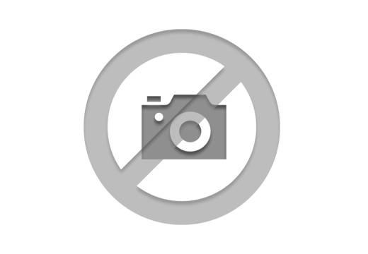 8 - Ibiza 1.6 TDI 95 ch S/S BVM5