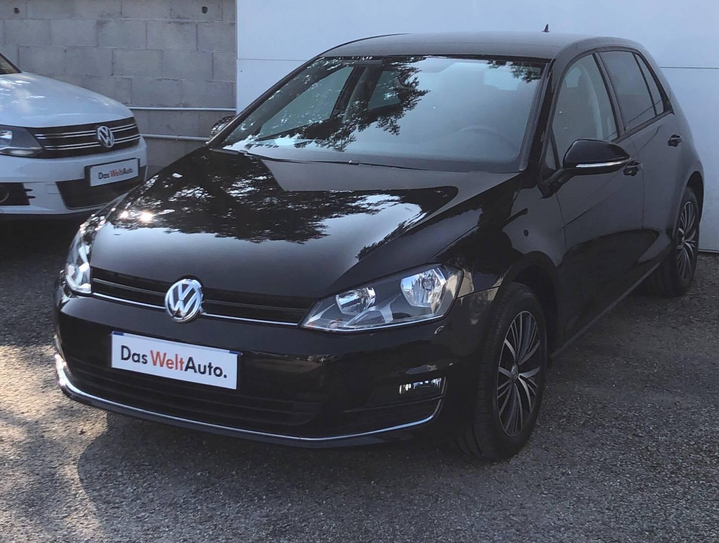 1 - Golf 1.6 TDI 110 BlueMotion Technology FAP